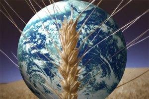 food-crisis-world