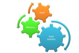 food-industry-scale-efficiency