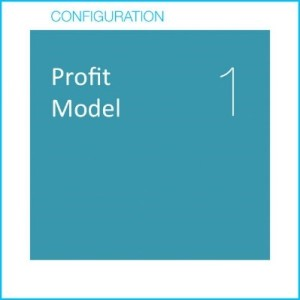 Profit Model